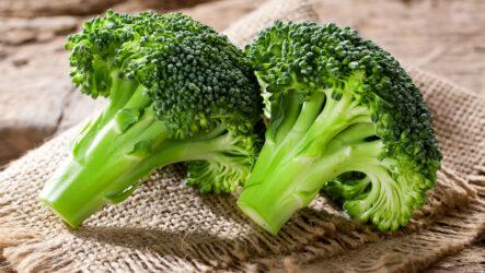 Выращивание капустных растений брокколи, уход за ними, полезные свойства