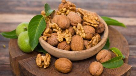 Грецкий орех. Как садить и выращивать в домашних условиях? Виды грецкого ореха и их  особенности. Полезные свойство грецкого ореха. Болезни и лечение. Цена