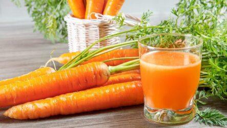 Морковь. Как выращивать и ухаживать за морковью. Виды и их особенности. Болезни и лечение. Цена.